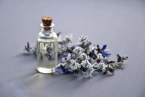 Read more about the article Borretschöl – DARUM solltest du es bei Hautproblemen und Allergien unbedingt im Haus haben
